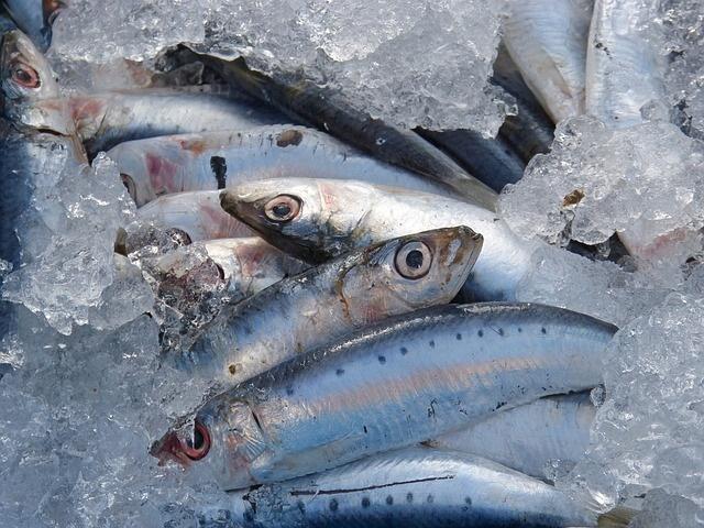 pesce-azzuro