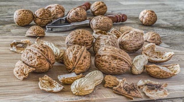 Alimenti che contengono acido linoleico