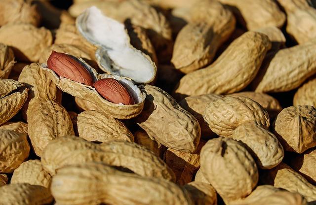 arachidi o noccioline amaricane